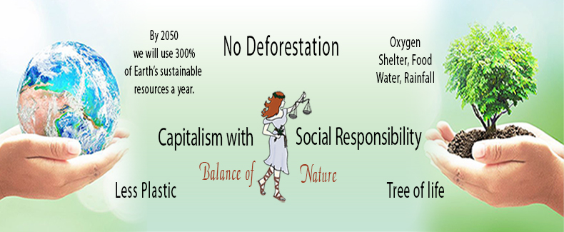 Capitalism with Social Responsibility